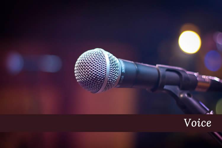 Voice Lessons - Niagara School of Music