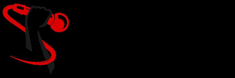 SE-Program-Logo